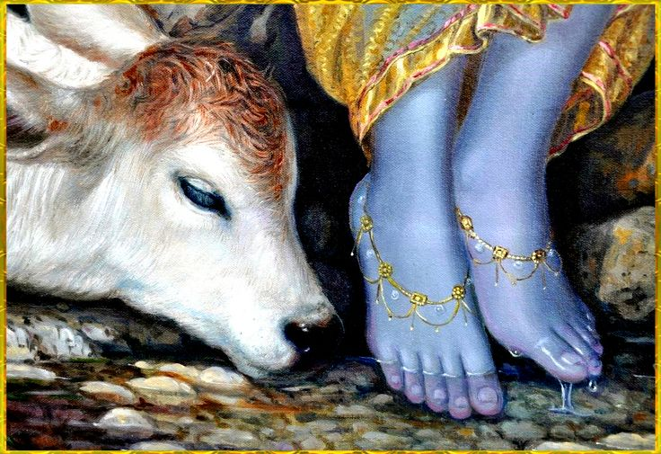 .KRISHNA's lotus feet.
