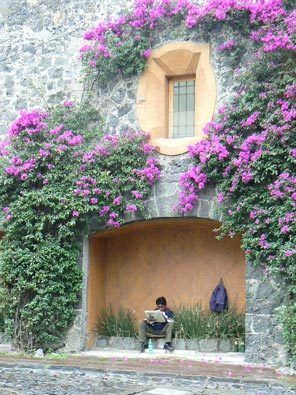 Mexico City's San Ángel neighborhood retains the feel of the small village it once was with its cobbled streets and houses covered with colo...