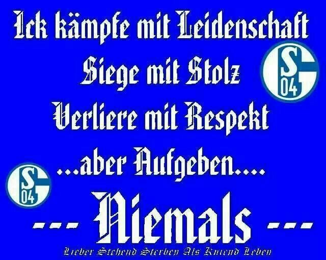 Kickboxing, Muay Thai, Fight Quotes, Kampf, Quotes. Schalke Baby