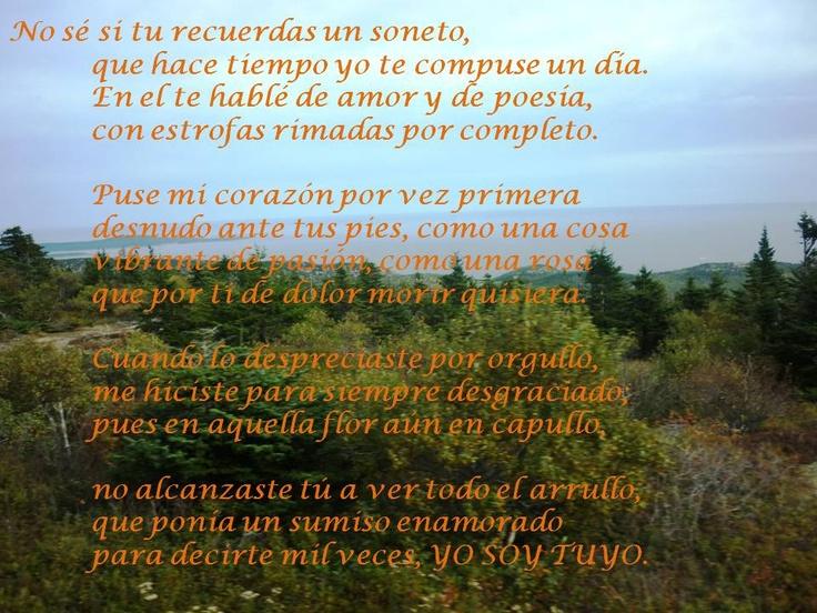 Poemas  SANTIAGO ONTAÑÓN DELGADO