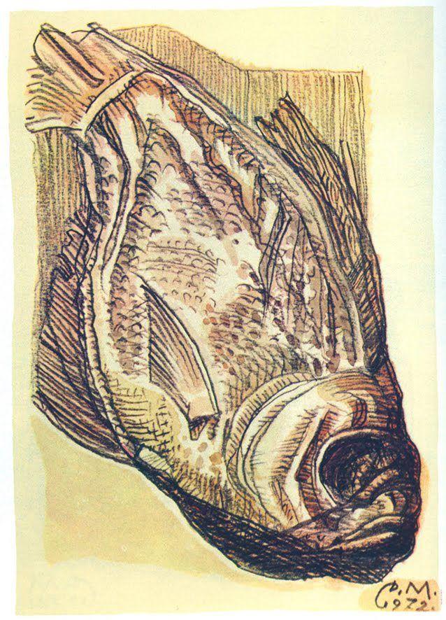 Дмитрий Исидорович Митрохин. Рыба. 1972 Карандаш, акварель