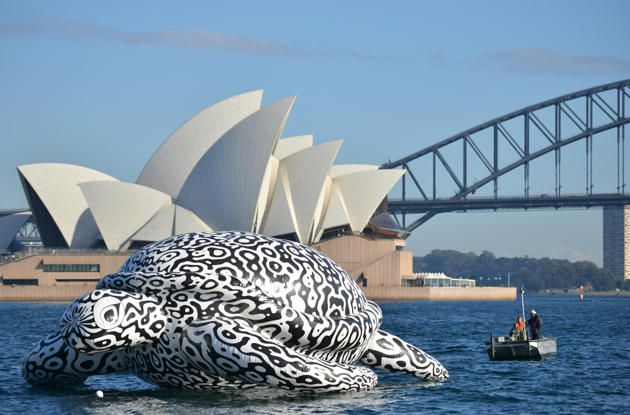 A five-metre tall, 15-metre long inflatable sea turtle created by artist BJ Price is towed around Sydney Harbour past the iconic Harbour Bridge and Opera House to celebrate the opening of the Worldâs First Undersea Art Exhibition at SEA LIFE Sydney Aquarium on August 15, 2014.