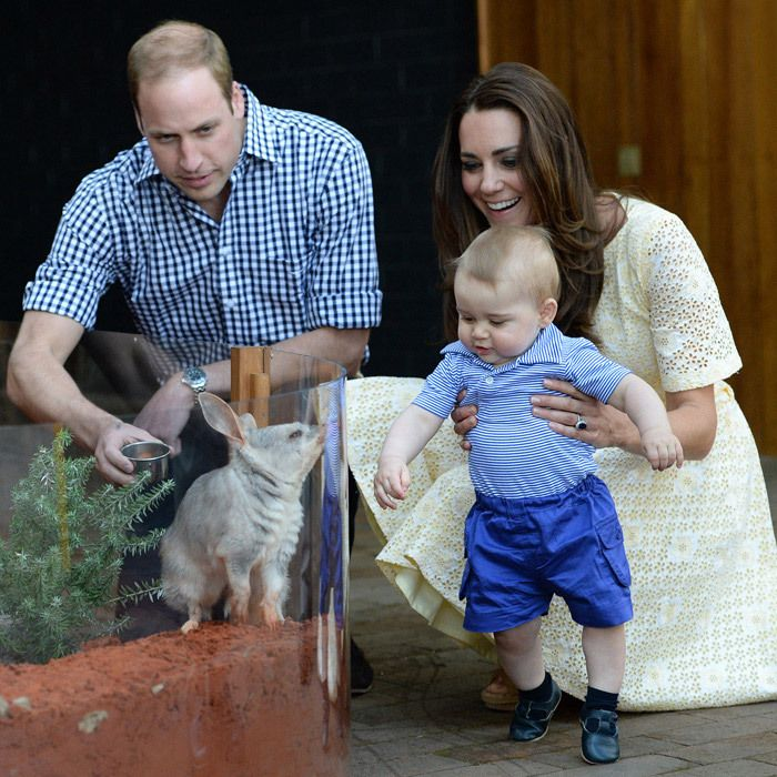 R: ROYAL TOURS  At eight months, George embarked on his first official tour with his parents, a 10-day trip to Australia and New Zealand. Cute photo opps abounded for the chubby-cheeked royal, including a visit to Sydney's Taronga Zoo (above). Travelling with two kids is usually more than twice as challenging for parents, so the new arrival might not get his or her passport stamped quite as quickly. Photo: © Samir Hussein/Getty Images