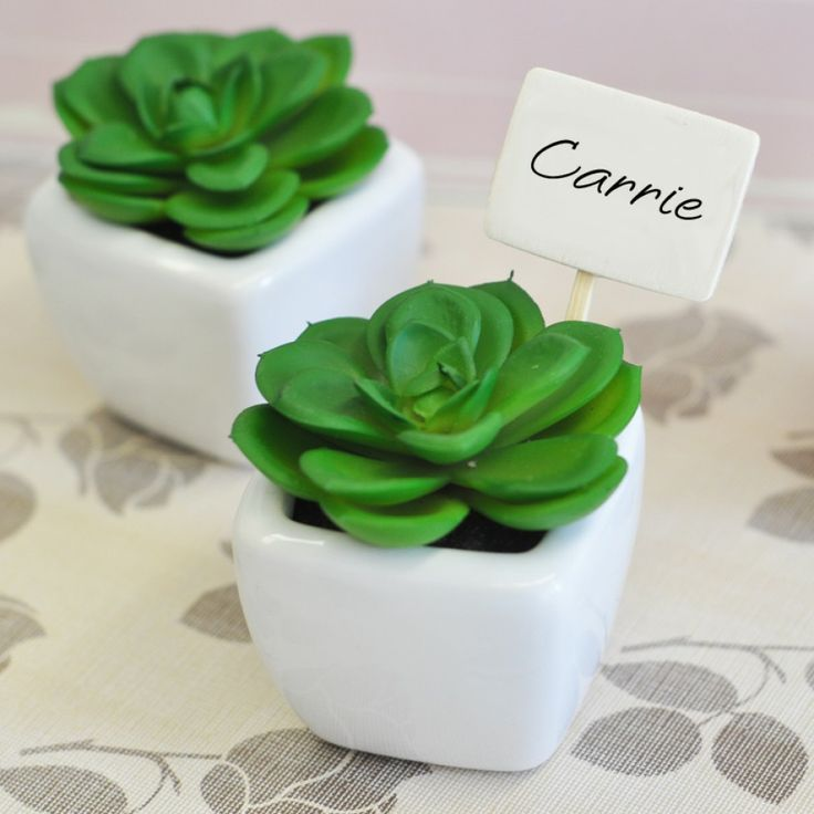 Get flower and plant wedding favor ideas with the help of these examples, including mini plants, potted plants, and more.