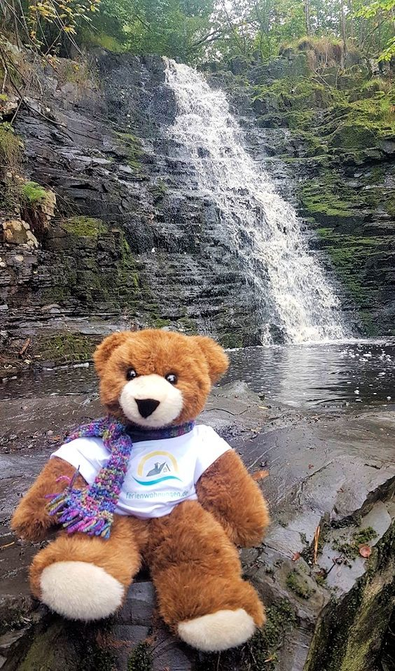 Der Urlaubär von ferienwohnungen.de unterwegs in Schweden, hat einen Wasserfall entdeckt.