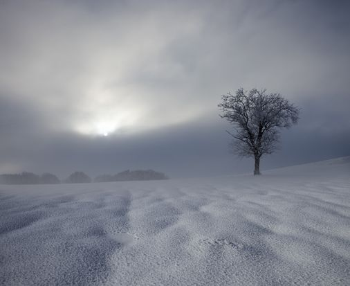 Winter Impression  © Franz Schumacher