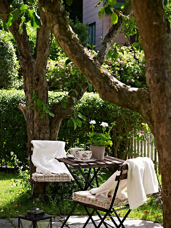 cafe table under the trees