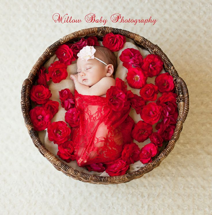 Baby on a bed of roses - sweet newborn baby girl sleeping on a basket of roses - from Denise Lewinski at Willow Baby Photography