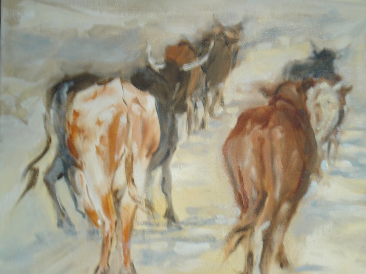 Mary Fowlds Cattle