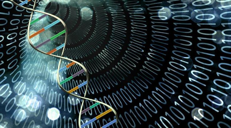 DNA computing is a branch of computing which uses DNA, biochemistry, and…
