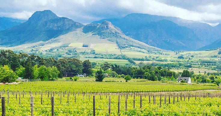 #Stellenbosch #holidays #weekends #travel Visit www.sa-rail.co.za/stellenbosch/