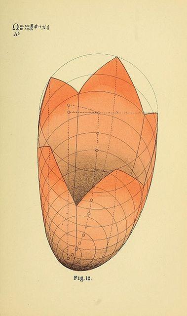 145 Best Geometric    Textures Images On Pinterest