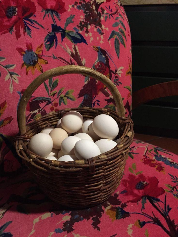 Poltrona vintage rivestita con velluto in cotone disponibile in 5 colori diversi www.xiwikj.com www.facebook.com/xiwikj