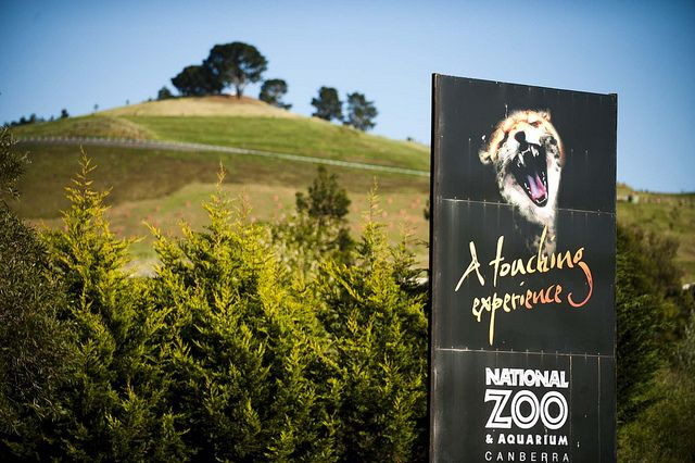 National Zoo and Aquarium, Canberra   Flickr - Photo Sharing!