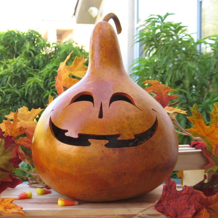 609 best gourds halloween images on pinterest for Where to buy gourds for crafts