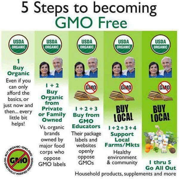 17 best images about gmo 39 s food crime on pinterest for List of natural items