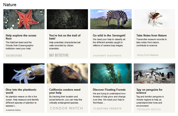 Zooniverse Zooniverse is another wonderful place to find a TONS of citizen science opportunities. Many of these focus on the topics of space, climate and nature.