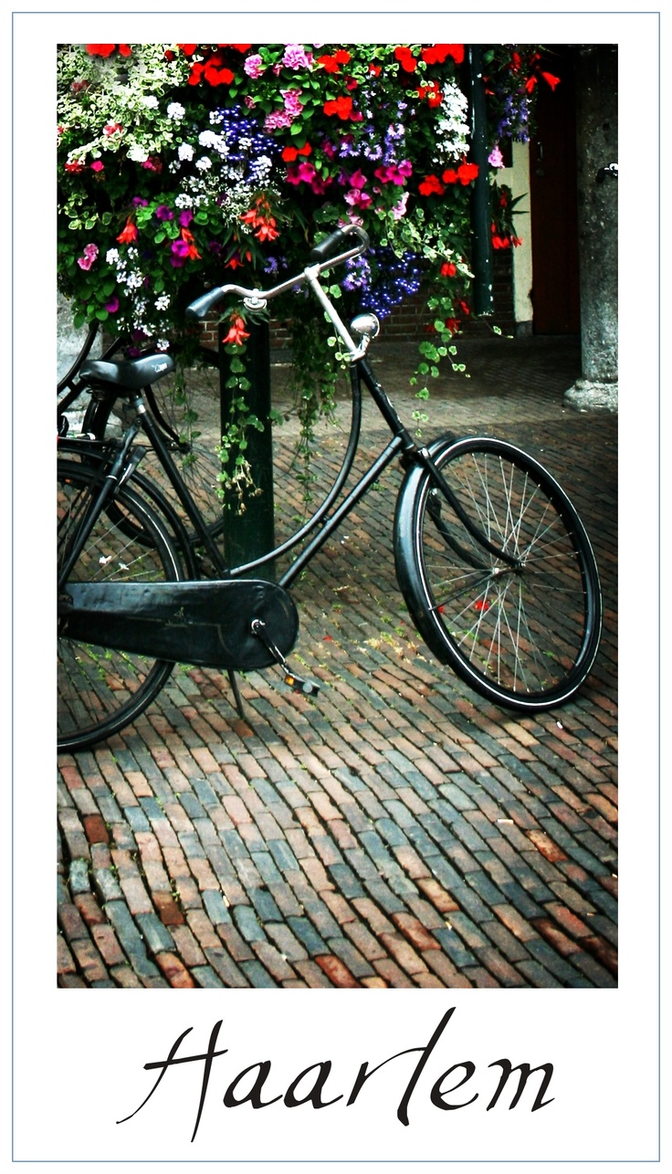 Haarlem - Holland