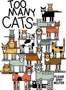 Sad but true...There are too many cats for homes available.  Please spay and neuter.  And then enjoy your feline friends.