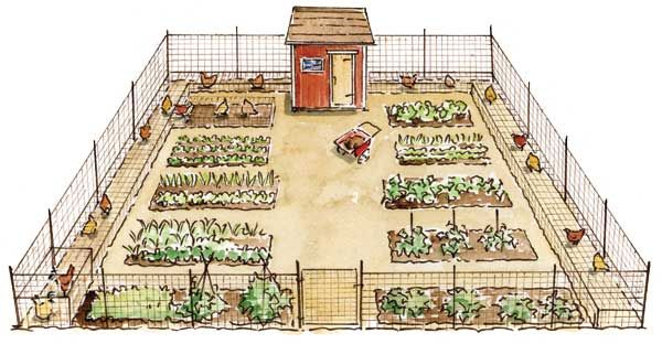 This well-designed garden plan makes it easy to put chickens to work in the garden. You can give your birds direct access to deposit manure fertilizer into your beds and enlist your birds for organic pest control as needed. Read more: http://www.motherearthnews.com/multimedia/image-gallery.aspx?id=2147513865=2#ixzz2Q1BX98p1