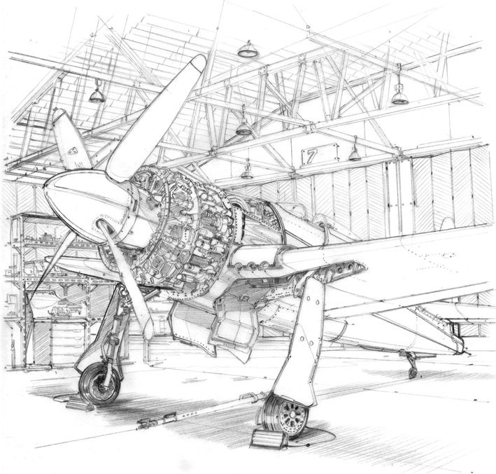 Speedbirds: daily sketch