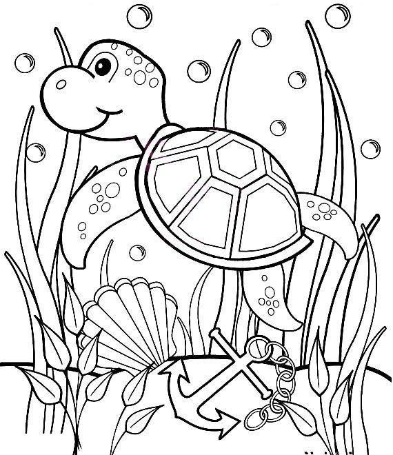personalized printable sea turtle under the sea birthday party favor childrens kids coloring page activity pdf or jpeg file - Amish Children Coloring Book Pages