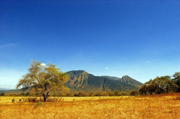 Baluran, Little Africa of East Java, Indonesia #Traveling #Savana