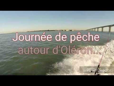 Pêche bâteau leurre gros bar (85 cm) Oléron big Seabass fishing  #bateau #fishing #leurre