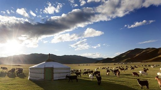 Traditional nomadic ger housing in Mongolia #landscape #local #living #tent #livestock #nature #mongolia #asia