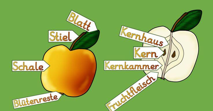 Kruschkiste: Tafelkarten Apfel