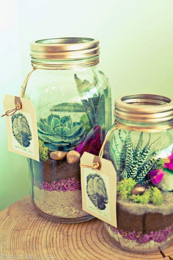love print studio blog: Succulents succulents everywhere...