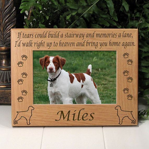 Brittany Terrier Custom Dog Picture Custom Dog Photo Custom Pet Photo Custom Pet Frame Dog Photo Frame Dog Memorial Frame Dog Frame With Images Dog Memorial Pet Frame Dog Photo Frames