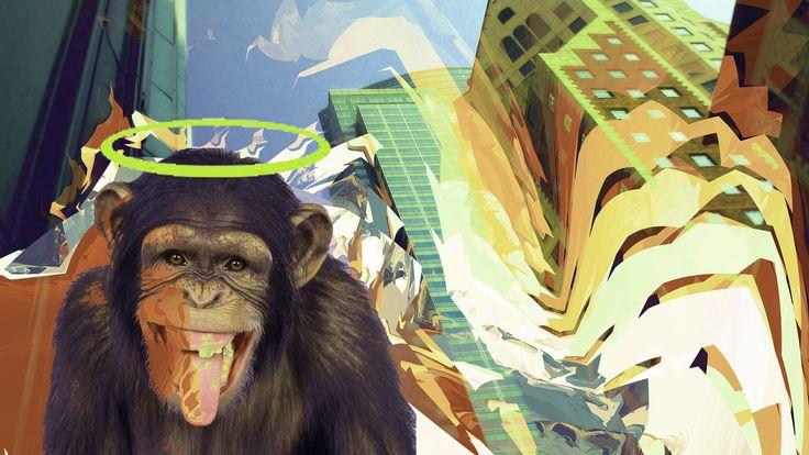 monkey, monkey, crazy monkey!