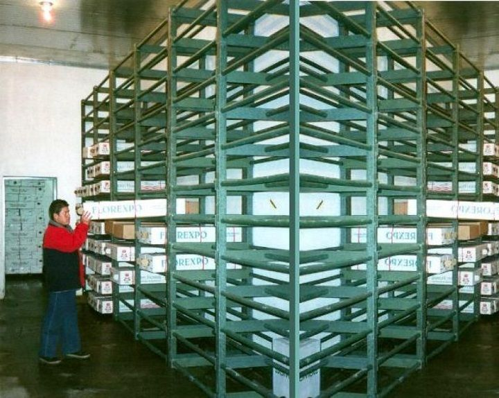 Estanterías para cuartos fríos estantería zonas húmedas estantes anaqueles gavetas plásticos vapor de agua repisas gavetas estantes armarios casilleros locker cuartos húmedos 00