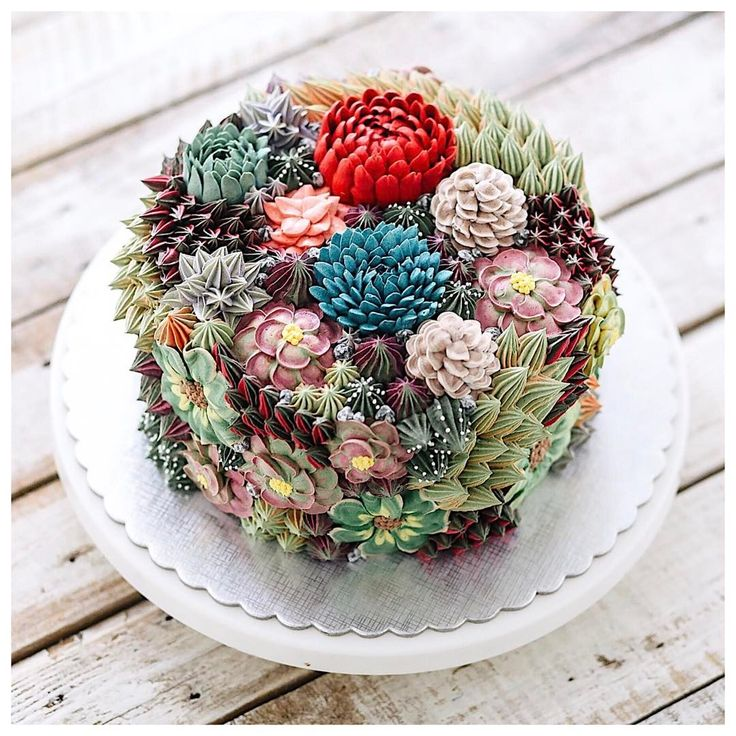 Cakes and Cupcakes Gorgeously Adorned With Incredibly Realistic Sugar Succulent Terrariums