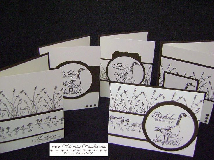Stampin' Studio: Project 9: Wetlands Masculine Cards
