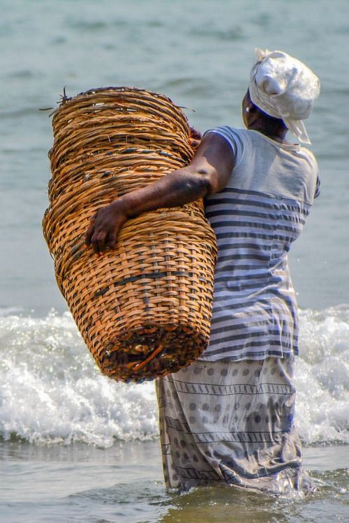 catandfinch:  Headed out to gather the catch of the day. Jamestown, Ghana photo @catandfinch