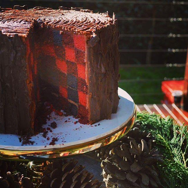 #lumberjackcake #lumberjackparty #lumberjack1stbirthday #surpriseinside #lumberjackbash #plaidcake