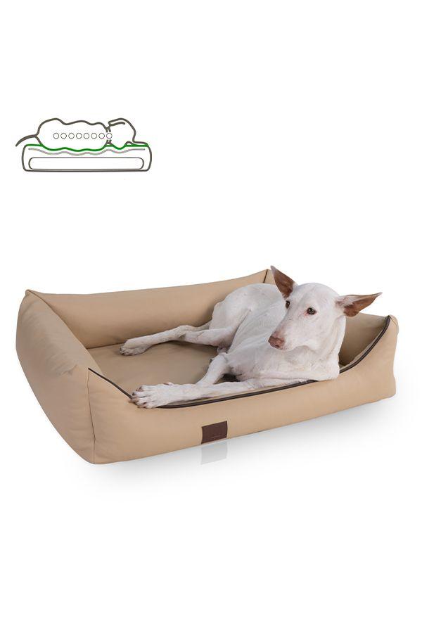 Orthopadisches Hundebett Buddy Kunstleder Farbe Beige Hunde Bett Orthopadisches Hundebett Hunde