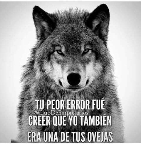 Frases de liderrrr...... lobos