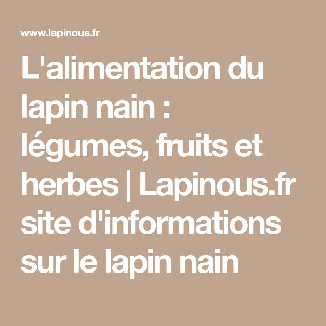 L'alimentation du lapin nain : légumes, fruits et herbes | Lapinous.fr site d'informations sur le lapin nain