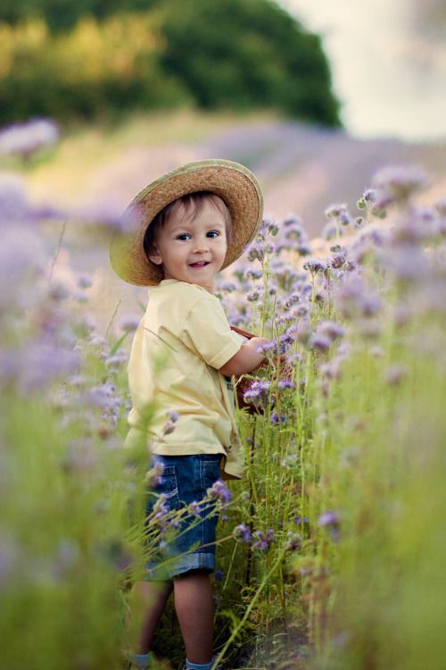 ♔ Little boy in field of lavender.
