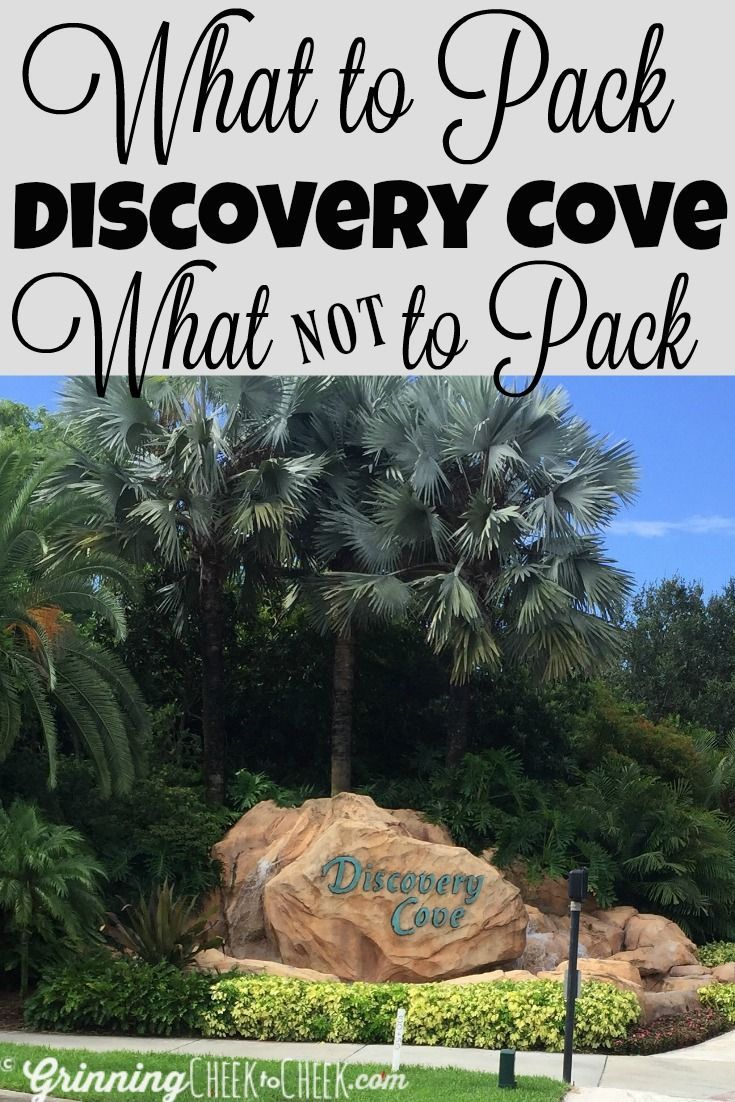 What to Pack & What NOT to Pack for your Day Trip to Discovery Cove in Orlando Florida