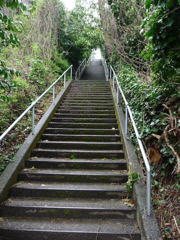 Best Seattle Stairway Workouts Around Union Bay