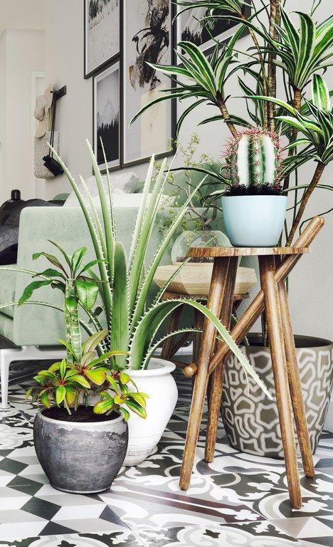 Pour un effet jungle, mixez les essences de plantes mais aussi les hauteurs. Placez-en au sol, d'autres surélevées sur des tabourets et enfin des dernières suspendus.
