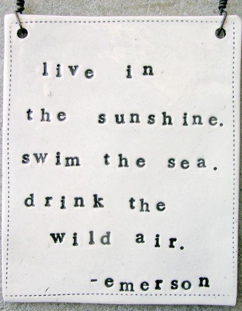 my favorite Emerson quote