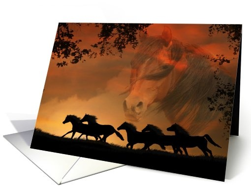 Horses card: Equine Sympathy Greeting Card by Stephanie Laird