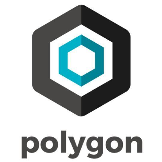 Polygon Technologies - Rockstart