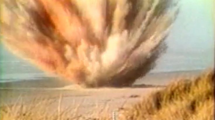 A report by KATU-TV on officials' decision to blow up an 8-ton dead whale on an Oregon beach in 1970 went on to become an early viral video....