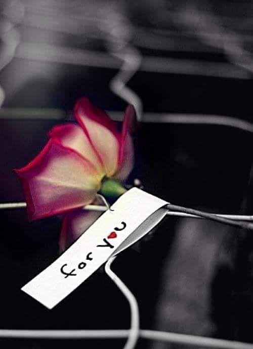 Los amorosos callan.  El amor es el silencio más fino,  el más tembloroso, el más insoportable.  Los amorosos buscan,  los amorosos son los que abandonan,  son los que cambian, los que olvidan.   Su corazón les dice que nunca han de encontrar,  no encuentran, buscan.  Saben que nunca han de encontrar.  El amor es la prórroga perpetua,  Los amorosos se ponen a cantar entre labios  una canción no aprendida,  y se van llorando, llorando,  la hermosa vida.